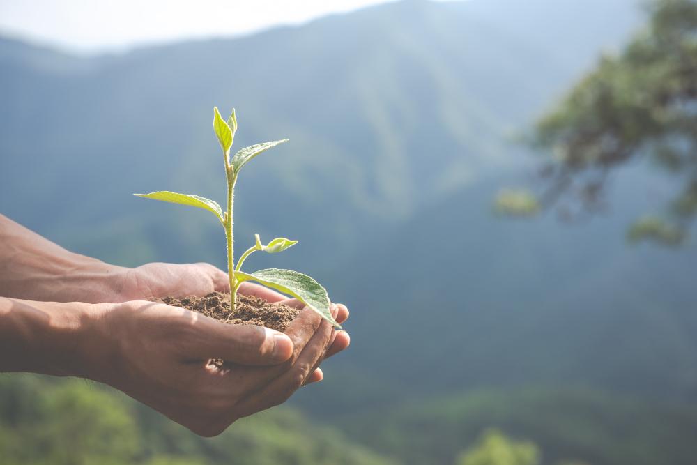 responsabilità sociale e ambientale